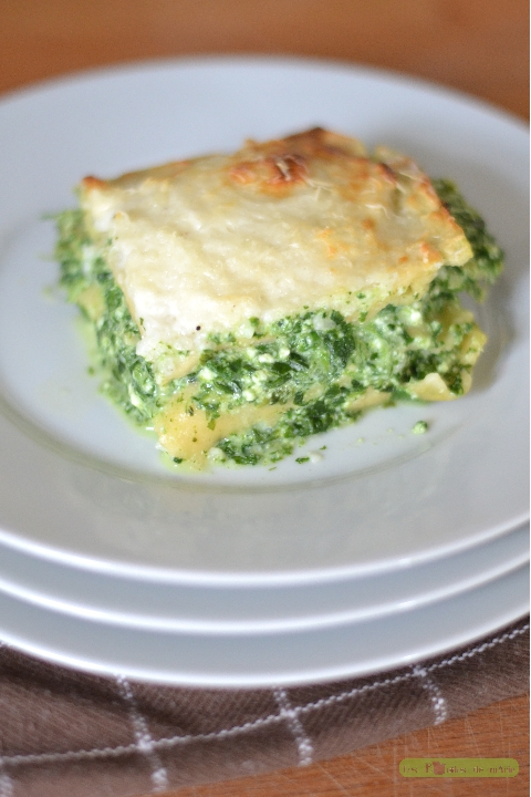 lasagne-brousse-epinard-2